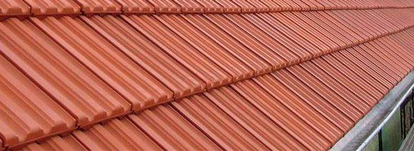 Nelskamp Nibra MS 5 roof
